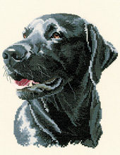 Cross stitch Black Labrador
