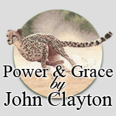 John Clayton's Power and Grace